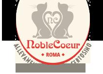 Allevamento Gatto Certosino Roma Con Affisso Anfi Chi Siamo